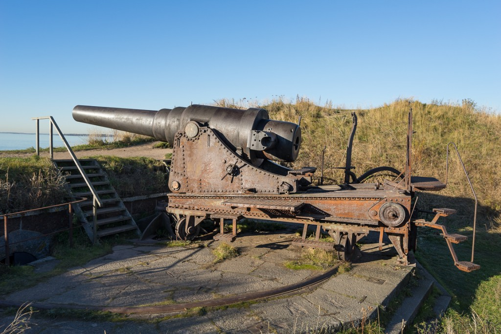 Another coastal cannon