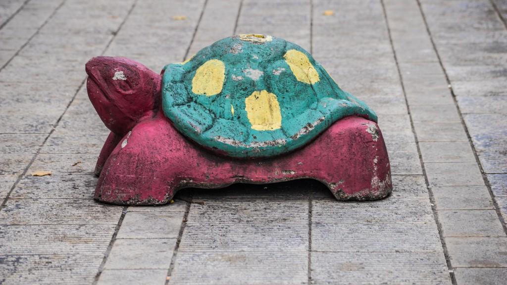 Just another turtle in Helsinki
