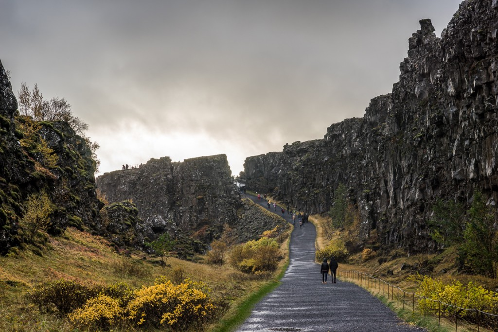 Edge of the North American plate (Almannagja) at Thingvellir. The plates are moving apart at around 7mm per year.