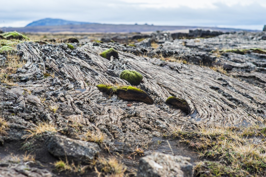 Old lava at Sandkrikja