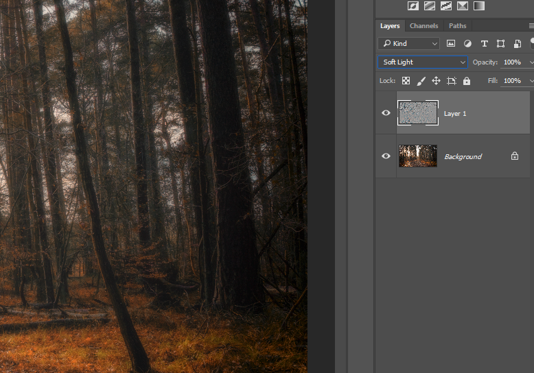 Adding the soft light filter